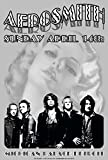 DETROIT ROCK POSTERS CARL LUNDGREN ART Aerosmith Michigan