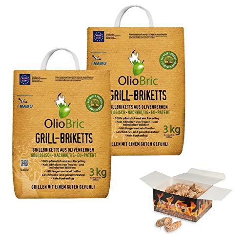 raumbox OlioBric 6kg Gourmet-Grill-Briketts | Oliventrester Grillkohle | nachhaltig | kein Rauch + 45 Ritz Bio Holzwolle Anzünder