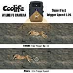 Coolife Wildlife Camera No Glow 940nm IR LEDs Trail Camera 0.2s Trigger Speed Game Camera Night Vision up to 65ft/20m and IP66 Waterproof 12MP 1080P HD Hunting Camera with 32G SD Card