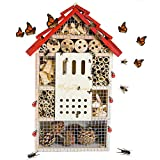 HelpAccess Insect House : hôtel pour Insectes, Aide à la...