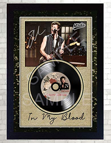 SGH SERVICES Shawn Mendes In My Blood Autogramm-Foto, gerahmt, Mini LP Schallplatte