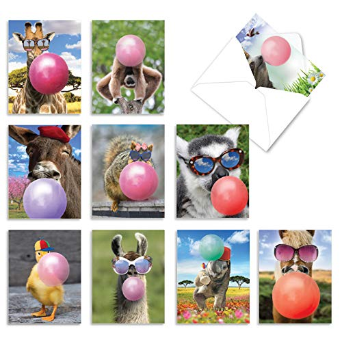The Best Card Company - 10 Animal Birthday Cards with Envelopes (4 x 5.12 Inch) - Cute Boxed Notecards, Bulk Bday Cards for Kids - Balloon Animals AM6837BDG-B1x10