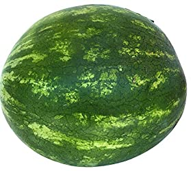 Melon Watermelon Seedless Whole Trade Organic, 1 Each