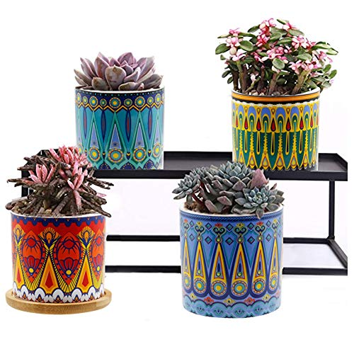 DR.DUDU 3 Inches Ceramic Cactus Flower Pot with Saucer, Succulent Planter Container Bonsai Pots for Flowers Herb, Set of 4