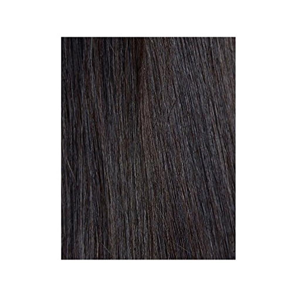 黒檀図1 - 美しさは、100%レミーの色見本ヘアエクステンションの作品 x4 - Beauty Works 100% Remy Colour Swatch Hair Extension - Ebony 1B (Pack of 4) [並行輸入品]