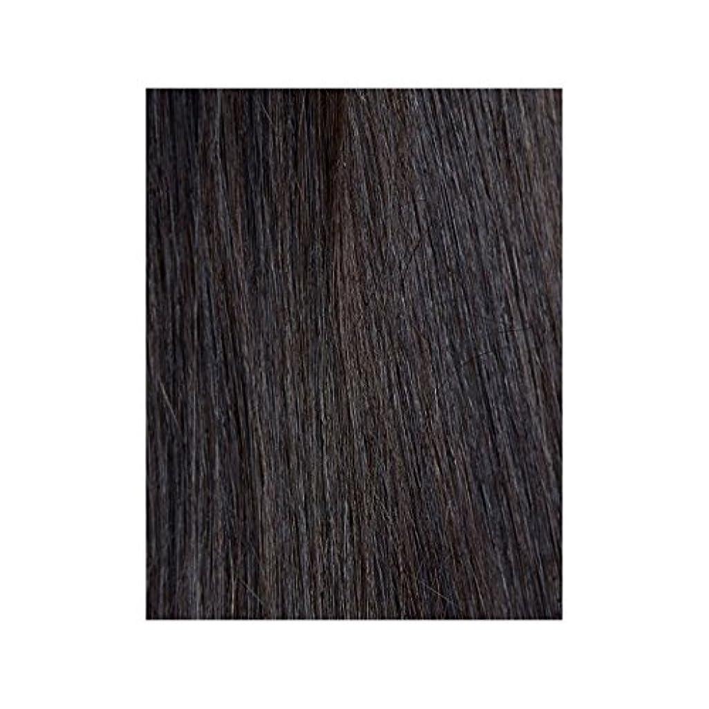 夫婦不愉快士気Beauty Works 100% Remy Colour Swatch Hair Extension - Ebony 1B - 黒檀図1 - 美しさは、100%レミーの色見本ヘアエクステンションの作品 [並行輸入品]