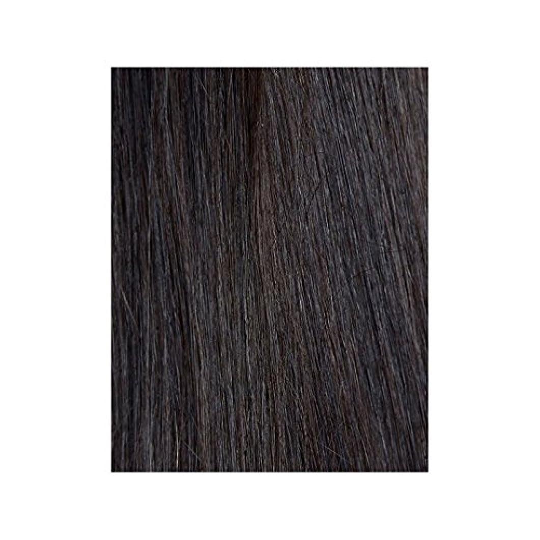 メジャー安西流行黒檀図1 - 美しさは、100%レミーの色見本ヘアエクステンションの作品 x4 - Beauty Works 100% Remy Colour Swatch Hair Extension - Ebony 1B (Pack of 4) [並行輸入品]