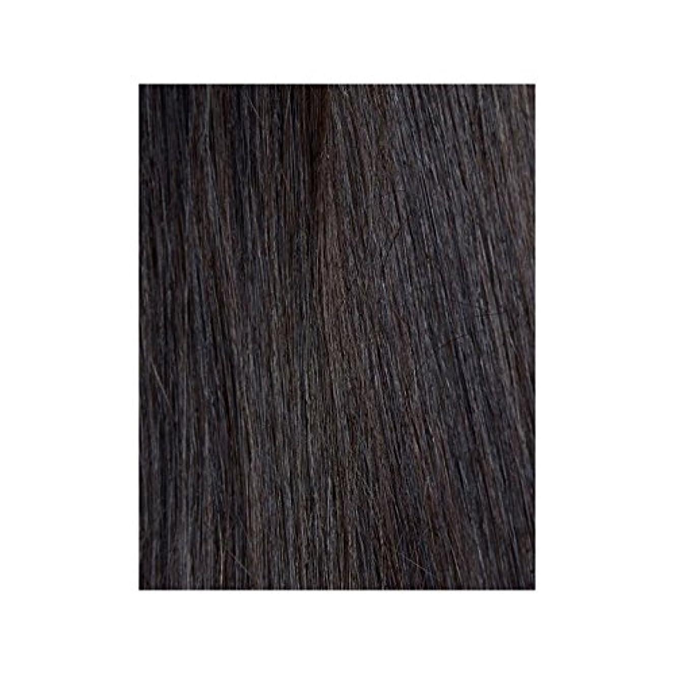 領事館感覚ケーブル黒檀図1 - 美しさは、100%レミーの色見本ヘアエクステンションの作品 x4 - Beauty Works 100% Remy Colour Swatch Hair Extension - Ebony 1B (Pack of 4) [並行輸入品]
