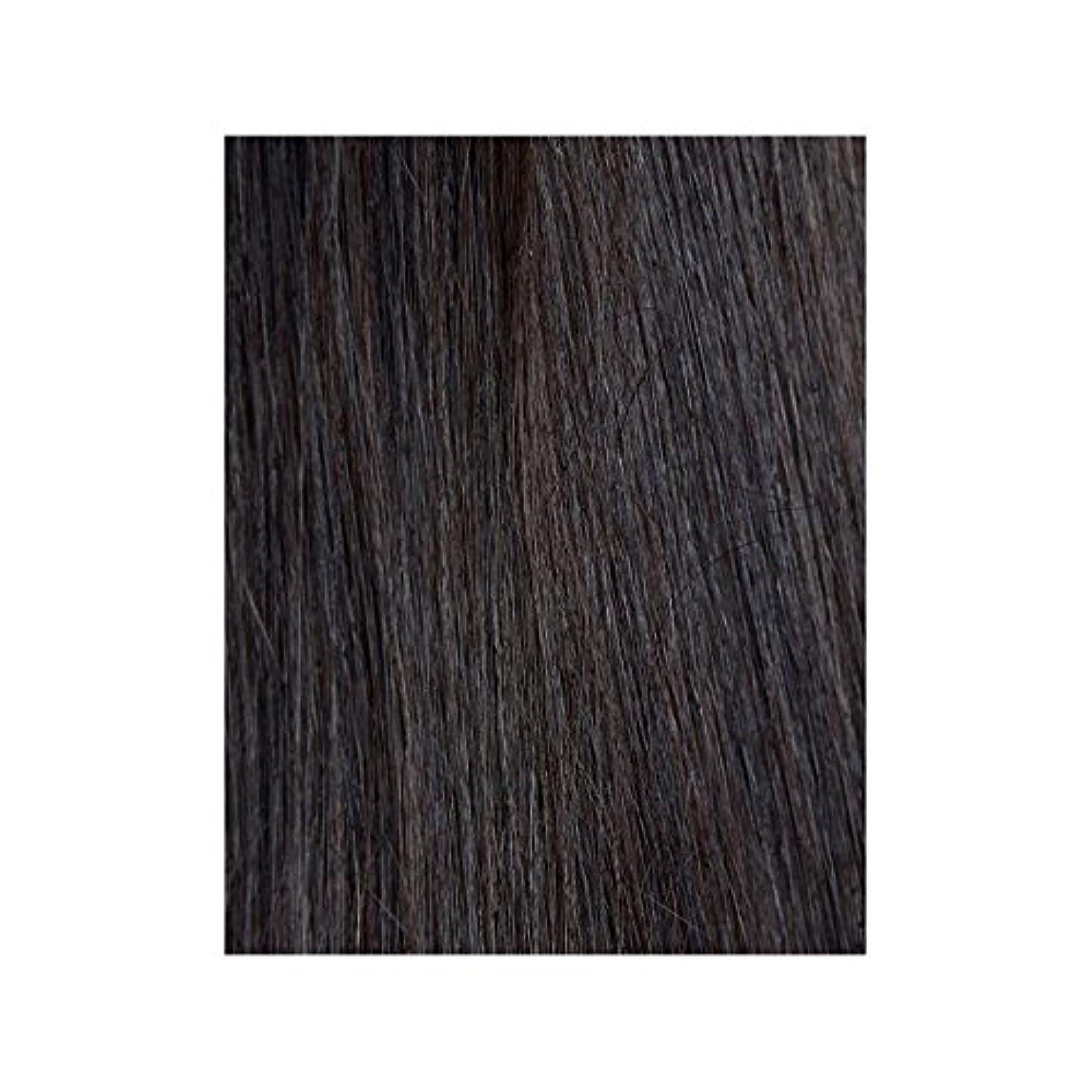 中絶招待先行する黒檀図1 - 美しさは、100%レミーの色見本ヘアエクステンションの作品 x4 - Beauty Works 100% Remy Colour Swatch Hair Extension - Ebony 1B (Pack of 4) [並行輸入品]