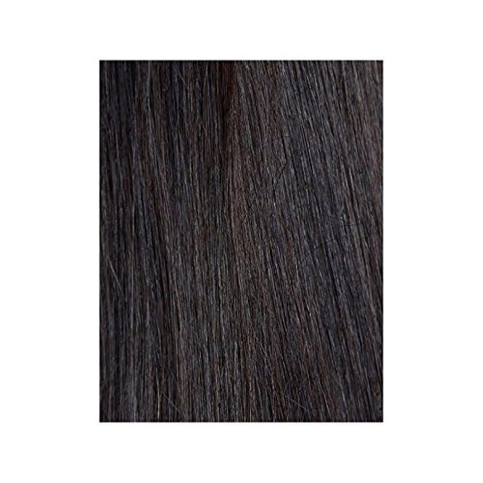 杭スマート設置黒檀図1 - 美しさは、100%レミーの色見本ヘアエクステンションの作品 x4 - Beauty Works 100% Remy Colour Swatch Hair Extension - Ebony 1B (Pack of 4) [並行輸入品]