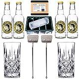 Accessori premium per Gin & Tonic: Con 2x bicchieri in cristallo - 2x bar cucchiaio / asticellain acciaio inossidabile - 4x Acqua tonica - 1x stampo XXL per cubetti di ghiaccio - Ideale come regalo!