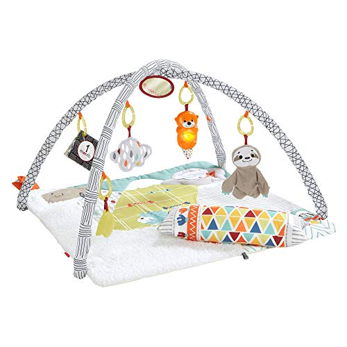 Fisher-Price Deluxe Gym