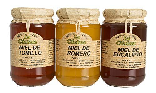 La Cántara - Miel Pura de Abeja - Pack 3x500 gr - Tomillo, Romero y Eucalipto – 100{4e6ddae48b5db9f67b33f70046eb2c7ce8be30644e4a7bf39947d500cbccca1b} Natural - Origen España