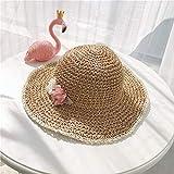 ZHAONAA Sombrero de Moda para niños Salvajes Sombrero De Paja De Los Niños, Fresca Pequeña Y Preciosas Flores Sombrero For El Sol Plegable, Tamaño: 49-52cm