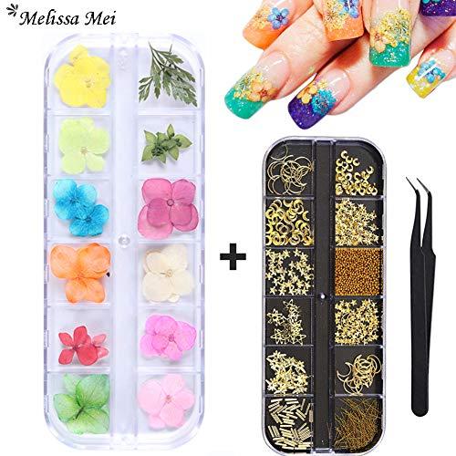 Kit de accesorios para decoración de uñas en 3D, flores secas, 12 rejillas, flores naturales y secas, gemas de metal para uñas de Swarovski, cristales de uñas