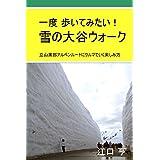 一度 歩いてみたい! 雪の大谷ウォーク: 立山黒部アルペンルートにクルマで行く楽しみ方 (旅行記)