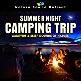 Summer Night Camping Trip: Campfire & Sleep Sounds of Nature
