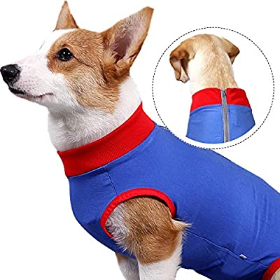 KADUNDI Dog Recovery Suit After Surgery,Pet Surgical Wear For Abdominal Wounds or Skin Diseases Prevent Licking Cone E-Collar Alternative,Bite Post-operative Clothing,L