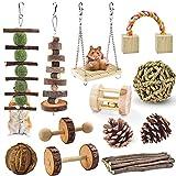 ERKOON 12 juguetes para masticar para hámsters, conejillos de indias, madera, ejercicio, campana, cuidado dental molar, juguete para ratas, chinchillas