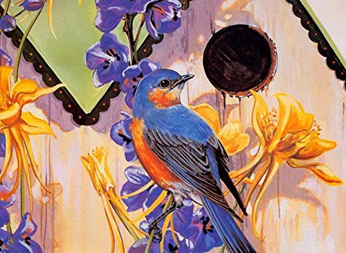 HAON schilderen op nummer voor volwassenen DIY Olieverf Kit Tekening Kleur Canvas Bloemen vogel Wall Art Home Decorations Gift 16x20 inch Zonder Frame