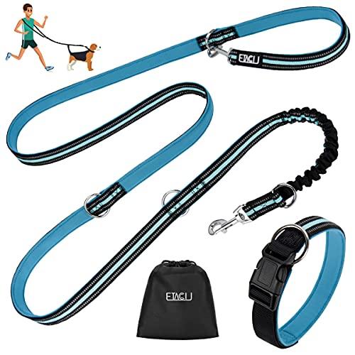 ETACCU Doppelte Leinen Freihandleinen Übungsleinen mit Rollleinen 3M für Mittelgroße Große Hunde Robuste Rutschfester Griff, Ohne Verwicklung, Reflektierende Einziehbare Hundeleine (Blau)