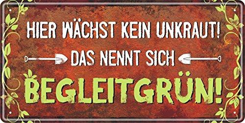 AV Andrea Verlag Großes Metallschild rostfrei Blechschild Schild Garten mit lustigem Spruch im Vintage Retro Look (Begleitgrün)