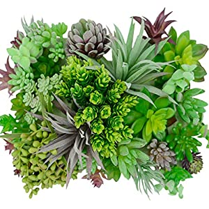 Silk Flower Arrangements 35 Gorgeous Artificial Succulent Plants Curated by Designers for Cohesive Colors, Most Realistic Fake Succulent Plants Available, Largest Set of Succulents