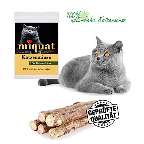 Miquat 5 Stück Matatabi Sticks, Naturprodukt als Katzenspielzeug mit Katzenminze Catnip für großen Knabberspaß mit gesunder Zahnpflege | Hilft bei Mundgeruch und Zahnstein