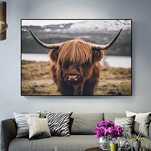 ganlanshu Tierplakate und Drucke Hochlandrinderkuh Leinwandmalerei Wohnzimmerdekoration,Rahmenlose Malerei,30x45cm