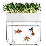 ZDYLM-Y Acuario de acuaponia, Sistema de Cultivo hidropónico, sembradora de riego automática orgánica, Acuario de acuaponia pequeño