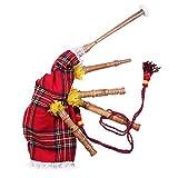 The Scotland Kilt Company Infantil Royal Stewart Moderna Cuadros Gaitas