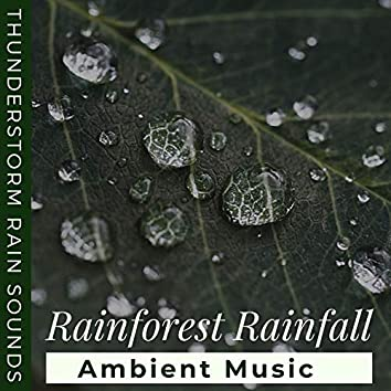 Rainforest Rainfall: Tropical Thunderstorm Rain Sounds with Ambient Music