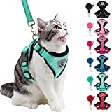 PUPTECK Cat Harness and Leash Set- Adjustable Vest Escape Proof Harness for Kitten Small Medium Cats, Retractable Breathable Soft Mesh for Outside with Reflective Strips