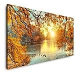 Paul Sinus Art schöne Bunte Bäume 120x 60cm Panorama