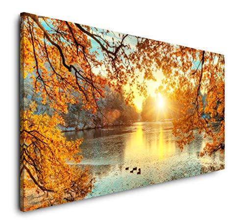Paul Sinus Art schöne Bunte Bäume 120x 60cm Panorama Leinwand Bild XXL Format Wandbilder Wohnzimmer Wohnung Deko Kunstdrucke