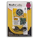 MultiPlay Re-recordable Sound Chip for Greeting Cards | Plays Different Recording Each Time Activated | Add the Power of Sound to Recordable Cards, Scrapbooks, Photo Albums, Personalized Gifts, Crafts