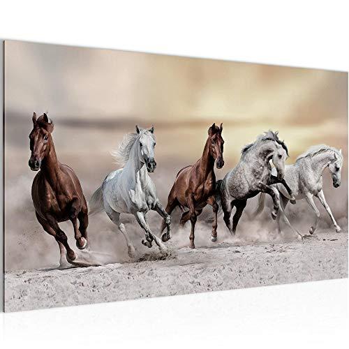 Bild Pferde Wandbild Vlies - Leinwand Bilder XXL Format Wandbilder Wohnzimmer Wohnung Deko Kunstdrucke Braun 1 Teilig - MADE IN GERMANY - Fertig zum Aufhängen 014114a