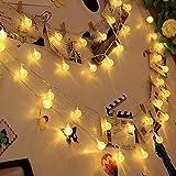 Valuetom 10M 80 LED 2 Mods Luces de hadas y Bola de Cristal Cadena de Luces Decorativas para Fiesta de Navidad, Fiesta Casera, Boda al aire libre y Decoración del jardín