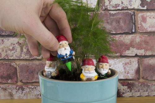 Gift Republic Plant Pot Gnomes Pflanzkübel Zwerge, Plastik, Multi