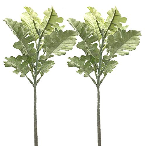 Aisamco 6 Pack Artificial Dusty Miller Spray in Grey Green Flocked Oak Leaves Stems Silk Greenery Filler Branches 13' Tall for Wedding Bouquets