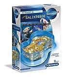 Clementoni 69937 Galileo Science – Original Salzkrebse, Züchten & Beobachten von Urzeitkrebsen, Spielzeug für Kinder ab 8 Jahren, Biologie zum Anfassen, für kleine Forscher -