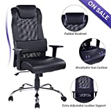 REFICCER Mesh & PU Leather Office Chair Computer Desk Task Ergonomic Swivel Chair - Adjustable Lumbar Support and Padded Headrest, Black