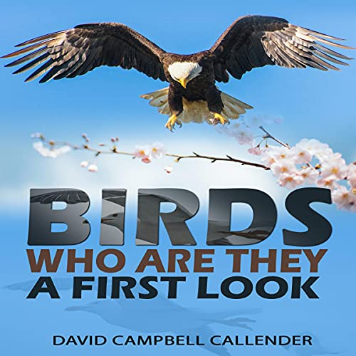 Birds, Who Are They?: A First Look (Callender Nature)