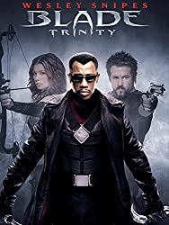 Blade The Dhampir Vampire Hunter