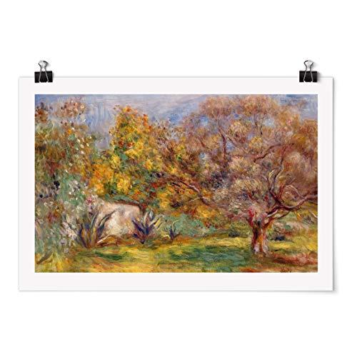 Bilderwelten Poster Motiv - Auguste Renoir - Garten mit Olivenbäumen - Glänzend 20 x 30cm