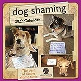 Dog Shaming 2022 Wall Calendar