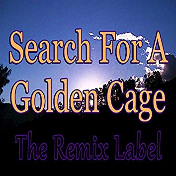 Search for a Golden Cage (2LS2Dance Dubhouse Basement Meets Bunker Deephouse Music)