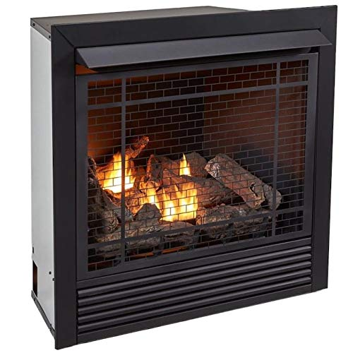 DuIuth Forge Dual Fuel Vent Less Gas Fireplace Insert - 32,000 BTU with Remote Control | SellerDirect220