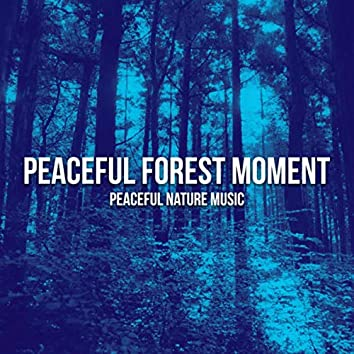 Peaceful Forest Moment