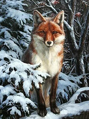 pintura diamante 5d completo infantil taladro completo de punto de cruz Bordado Cristal diamante Pinturas Artes para la decoración de la Pared del hogar,Forest Fox después de la nieve (30 x 40 cm)